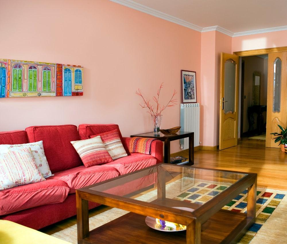 Una pared rosa en el salón 15 Fotos de salones decorados