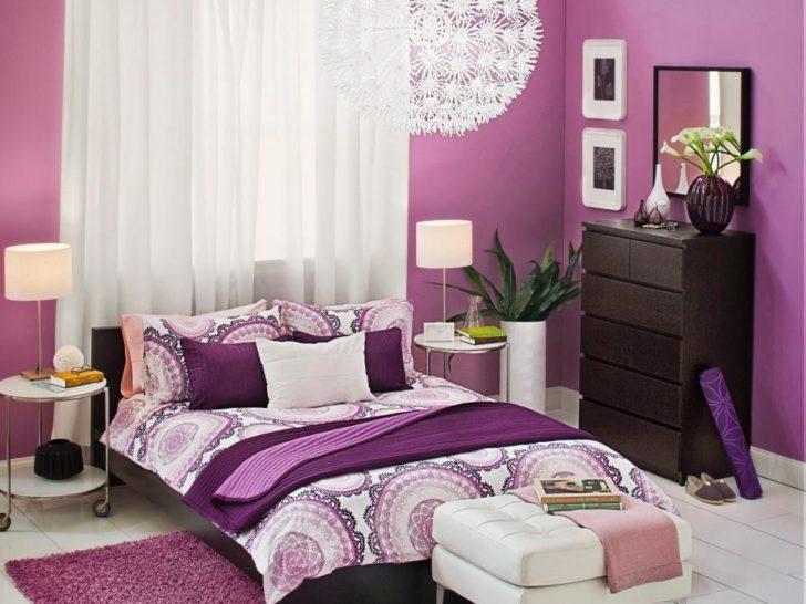 Domitorio lila violeta