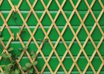 Jardines verticales, una opción verde