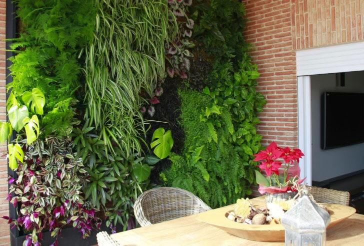 Jardin patio terraza