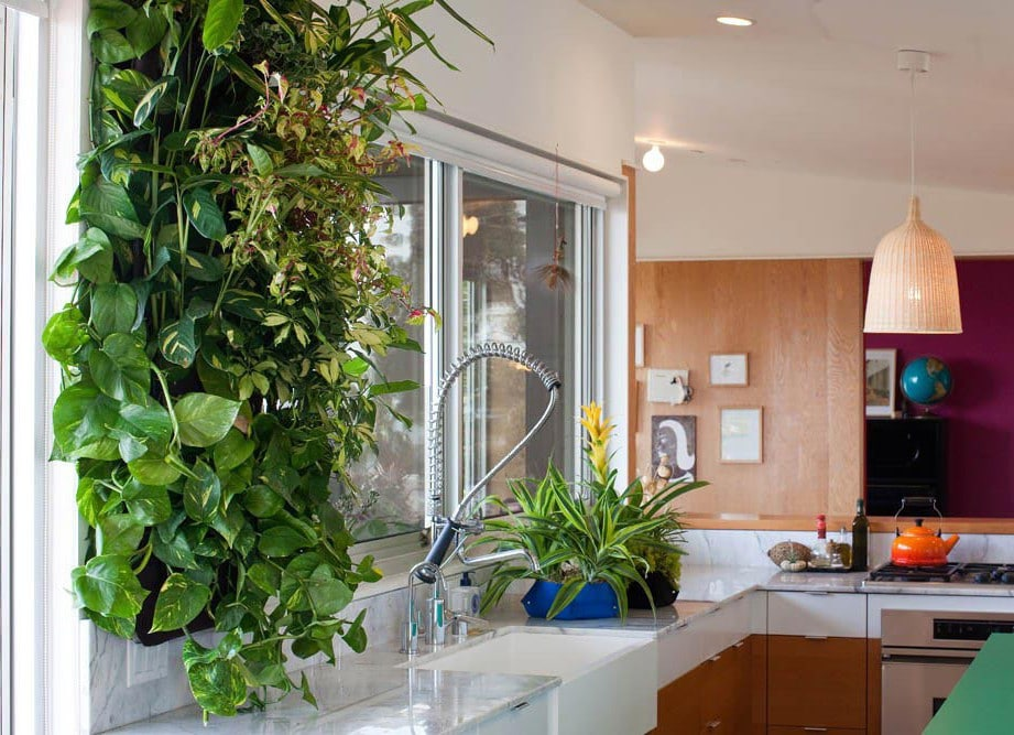Jardines verticales una opci n verde para exteriores e interiores casa y color - Jardines verticales de interior ...