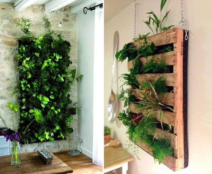 Jardines verticales una opci n verde para exteriores e - Plantas para jardines verticales ...