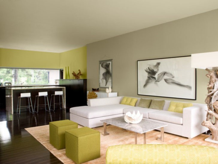 usando los colores para dividir espacios casa y color