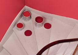 Té danzante, un color rojizo muy agradable para el 2012