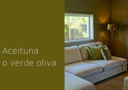 Color aceituna o verde oliva