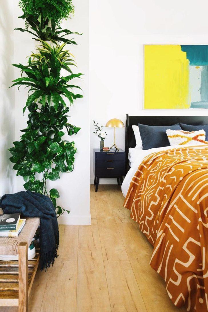 Plantas de interior en el dormitorio